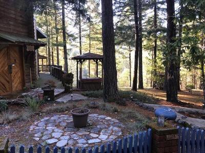 Grants Pass Single Family Home For Sale: 3361 Winona Road