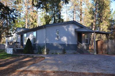 Josephine County Single Family Home For Sale: 4853 Williams Highway