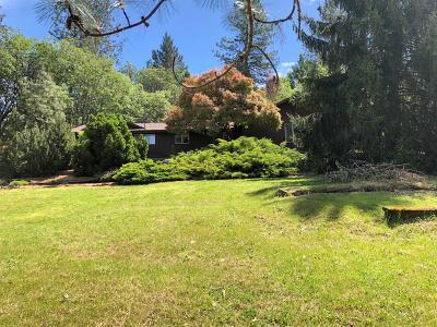 Grants Pass Single Family Home For Sale: 147 Dawn Allan Drive