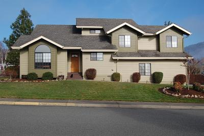 Grants Pass Single Family Home For Sale: 904 Regent Drive