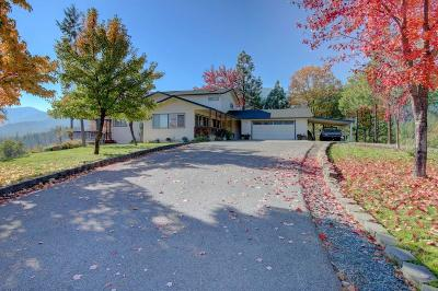 Rogue River Single Family Home For Sale: 9335 W Evans Creek Road
