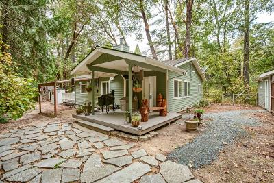 Grants Pass Single Family Home For Sale: 448 Pass Creek