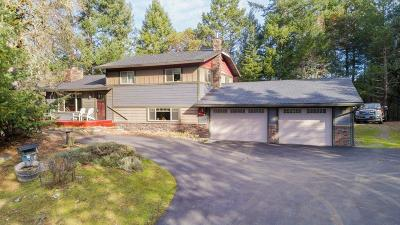 Jackson County, Josephine County Single Family Home For Sale: 425 Hyde Park Road