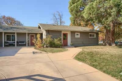 Ashland Single Family Home For Sale: 1282 Old Willow Lane