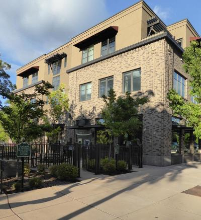 Ashland Condo/Townhouse For Sale: 175 Lithia Way #200