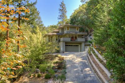 Single Family Home For Sale: 545 Ashland Creek Drive