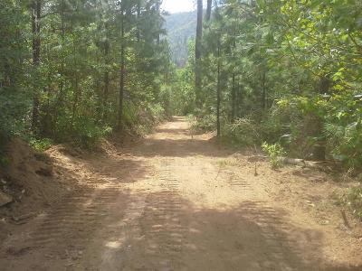 Merlin, Sunny Valley, Wimer, Rogue River, Wilderville, Grants Pass Residential Lots & Land For Sale: Wards Creek Road