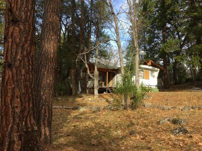 Ashland Single Family Home For Sale: 8698 Dead Indian Memorial Road