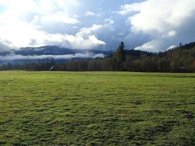 Rogue River Residential Lots & Land For Sale: 9820 E Evans Road