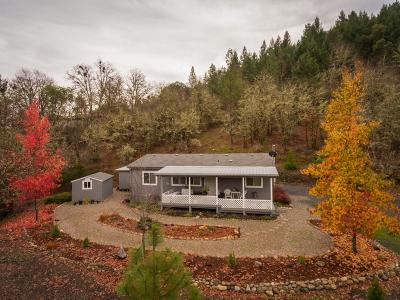 Merlin, Sunny Valley, Wimer, Rogue River, Wilderville, Grants Pass Mobile Home For Sale: 727 Wilderville Lane
