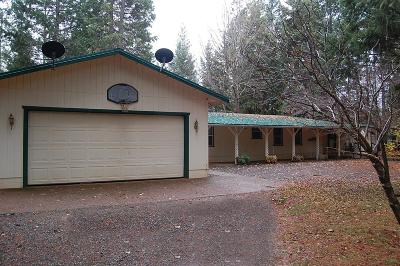 Jackson County, Josephine County Single Family Home For Sale: 441 Kinnikinnick Road