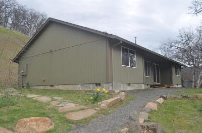 Ashland Single Family Home For Sale: 4388 Siskiyou Highway