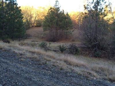 Grants Pass Residential Lots & Land For Sale: 353 Hieglen Loop