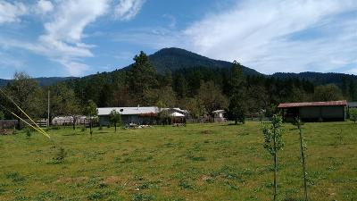 Jackson County, Josephine County Single Family Home For Sale: 1005 Happy Camp Road