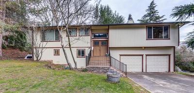 Ashland Single Family Home For Sale: 435 Friendship Street