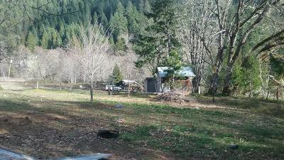 Jackson County, Josephine County Single Family Home For Sale: 730 Bear Creek Road