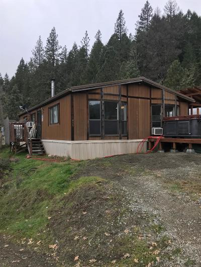 Jackson County, Josephine County Single Family Home For Sale: 499 Elder Mill Road