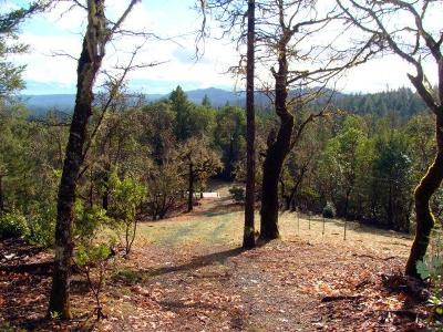 Merlin, Sunny Valley, Wimer, Rogue River, Wilderville, Grants Pass Residential Lots & Land For Sale: 2115 Crow Road