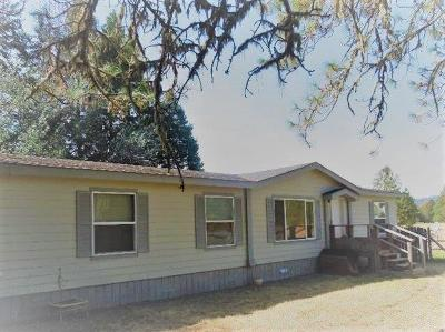 Jackson County, Josephine County Single Family Home For Sale: 475 Dick George Road