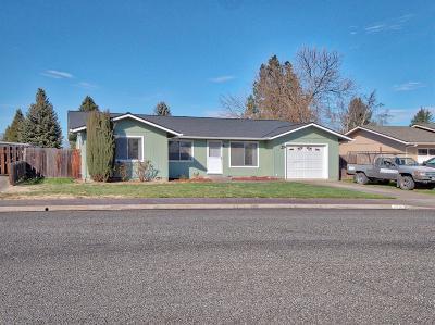 Phoenix Single Family Home For Sale: 516 Barnum Drive