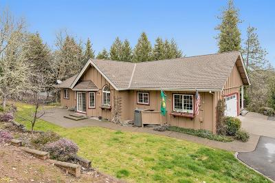 Single Family Home For Sale: 767 Jess Way
