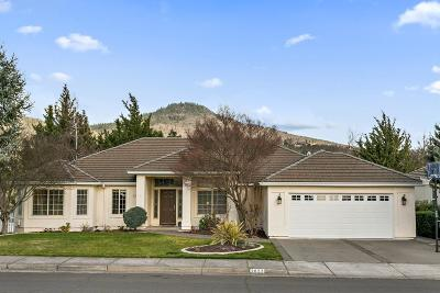 Medford Single Family Home For Sale: 2822 Kerrisdale Ridge Drive