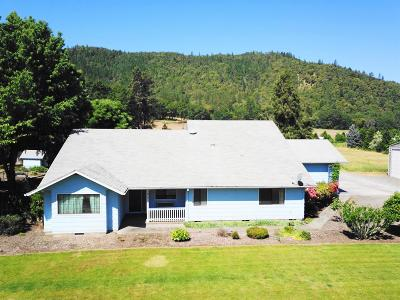 Central Point Single Family Home For Sale: 9401 Old Stage Road