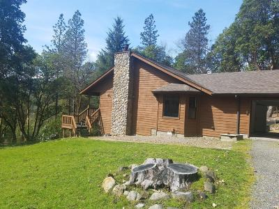 Rogue River Single Family Home For Sale: 4524 E Evans Creek Road