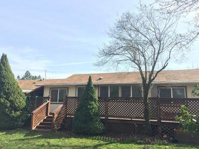 Rogue River Single Family Home For Sale: 285 Minthorne Road