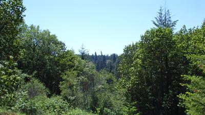Josephine County Residential Lots & Land For Sale: Speaker Road
