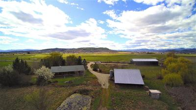 Eagle Point Single Family Home For Sale: 1840 Reese Creek Road