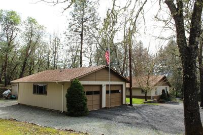 Jackson County, Josephine County Single Family Home For Sale: 5191 Cloverlawn Drive