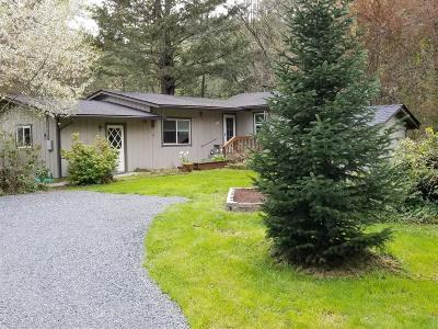 Rogue River Single Family Home For Sale: 1035 Minthorne Road
