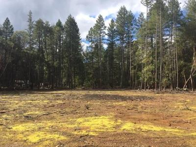 Grants Pass OR Residential Lots & Land For Sale: $169,000