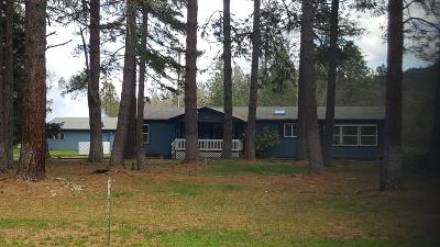 Grants Pass Single Family Home For Sale: 7593 Redwood Highway
