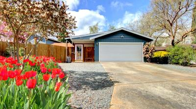 Phoenix Single Family Home For Sale: 117 Christie Court