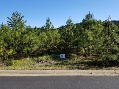 Cave Junction Residential Lots & Land For Sale: 216 Pomeroy View Drive