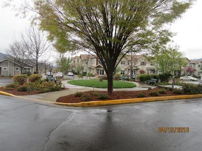 Ashland Single Family Home For Sale: 903 Mountain Meadows Circle