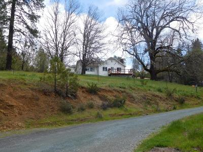 Jackson County, Josephine County Single Family Home For Sale: 24131 Redwood Highway