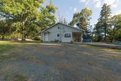 Rogue River Single Family Home For Sale: 2655 East Evans Creek Road