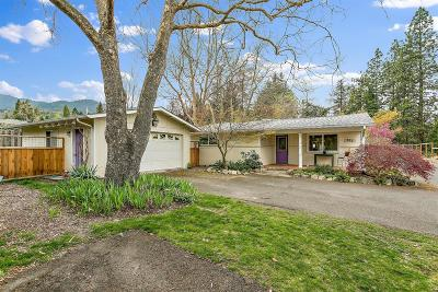 Ashland Single Family Home For Sale: 985 Bellview Avenue