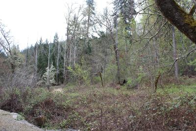 Josephine County Residential Lots & Land For Sale: 5001 Rogue River Highway