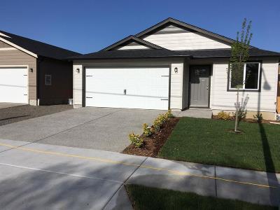 Medford Single Family Home For Sale: 1022 Cherry Street