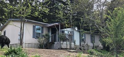Grants Pass Single Family Home For Sale: 11000 Applegate Road
