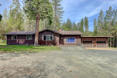 Jackson County, Josephine County Single Family Home For Sale: 10254 W Evans Creek Road