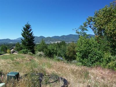 Residential Lots & Land For Sale: 1542 Panoramic