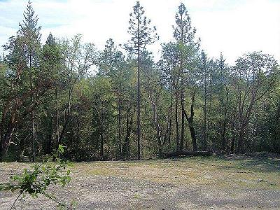 Josephine County Residential Lots & Land For Sale: 216 Pyle Drive
