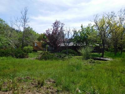 Jackson County, Josephine County Single Family Home For Sale: 250 Rail Lane