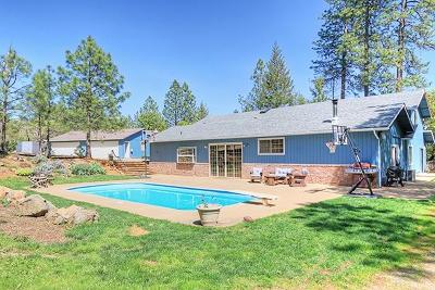 Josephine County Single Family Home For Sale: 145 Estates Lane