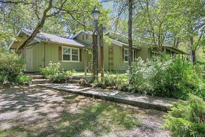 Single Family Home For Sale: 301 Holmstead Road
